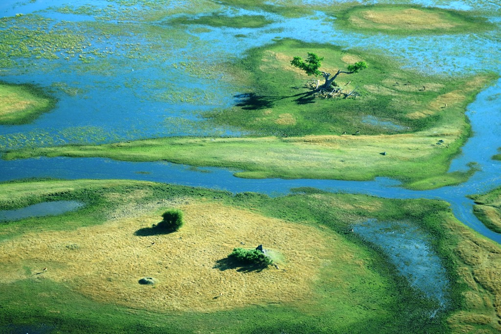 desertando-okavango